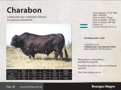 CHARABON